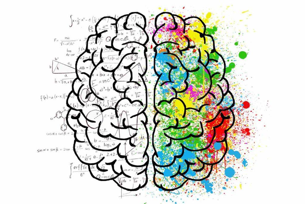 brain-2062057_1280-s